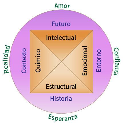 La pirámide de la salud en kinesiología